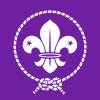 100px-world_scout_emblem